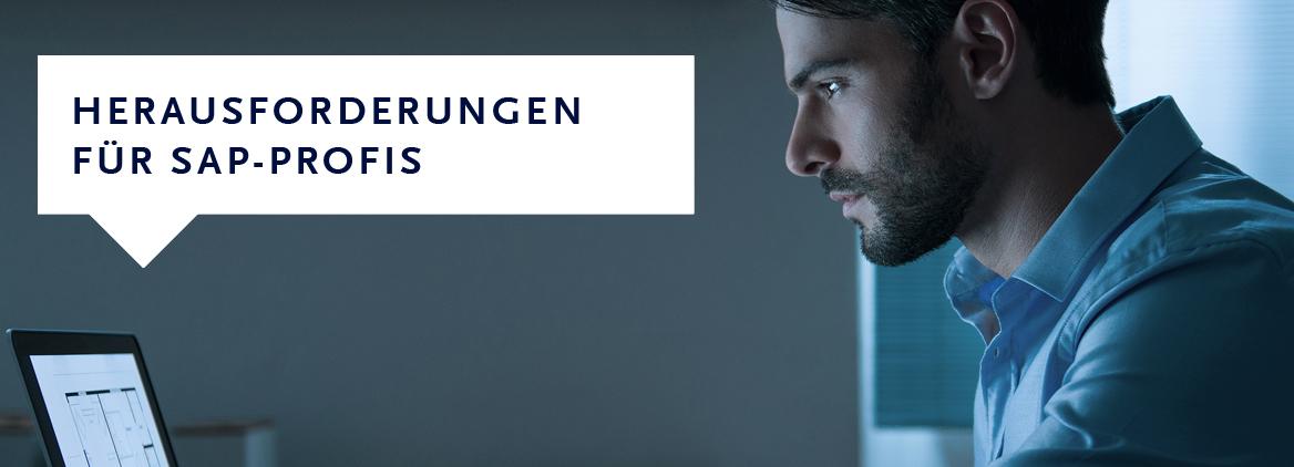 SAP-Projekte für Freelancer
